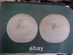 2 Rare DEEP ETCHED Glass HARVARD Astral Kerosene Oil 8 Student Lamp Ball Shades